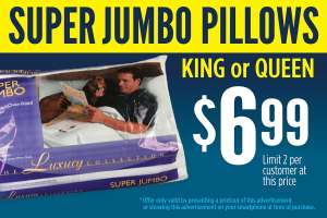 $6.99 pillows