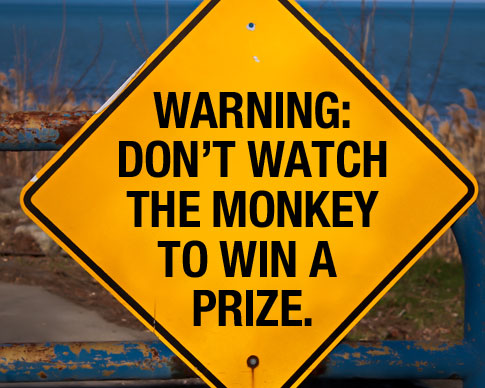 Don't Watch the Monkey to Win a Prize.